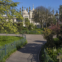 Buy canvas prints of Royal Pavilion in Brighton by Chris Dorney