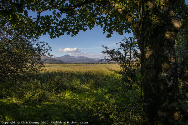 View of Snowdonia from Traeth Glaslyn Nature Reser Canvas Print by Chris Dorney