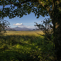 Buy canvas prints of View of Snowdonia from Traeth Glaslyn Nature Reser by Chris Dorney