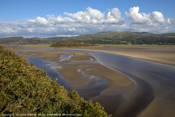 Dwyryd Estuary Viewed from Portmeirion in North Wa Canvas Print by Chris Dorney