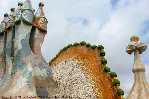 Gaudi Mosaics Canvas print by Milton Cogheil