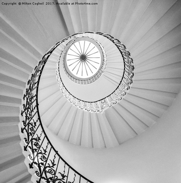 The Tulip Spiral Stairs - B&W Framed Mounted Print by Milton Cogheil
