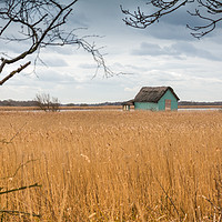Buy canvas prints of Horsey Boathouse, Norfolk Broads by Ann Mitchell