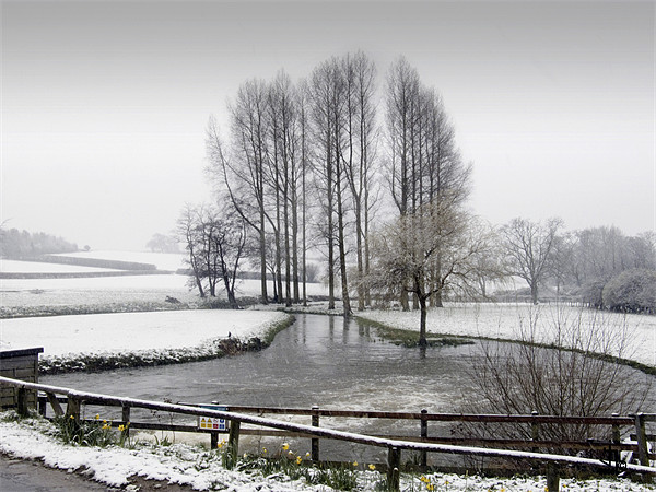 The Mill Pond after the Snowfall - monochrome Canvas print by john hartley