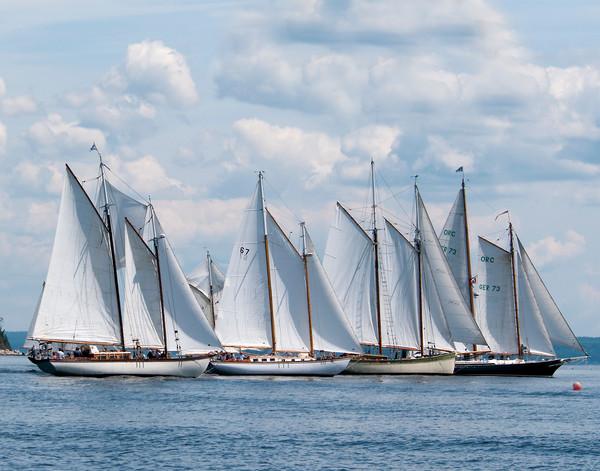Nova Scotia Schooner Races Canvas print by Roxane Bay