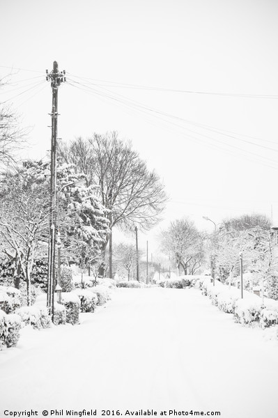 Let it Snow Canvas print by Phil Wingfield