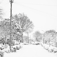 Buy canvas prints of Let it Snow by Phil Wingfield