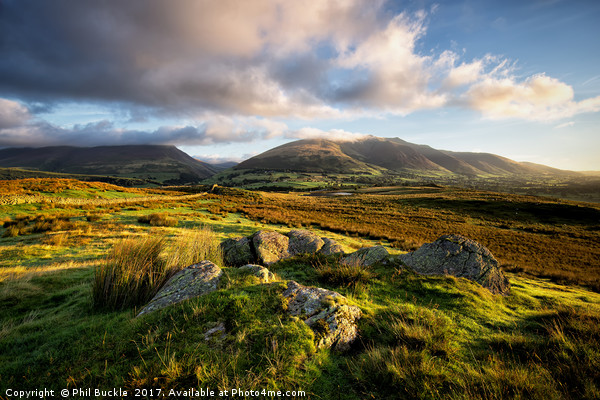 Low Rigg Fell View Canvas print by Phil Buckle