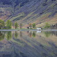 Buy canvas prints of Char Hut, Buttermere by Phil Buckle