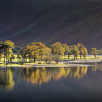 Buy canvas prints of Afternoon Light on Buttermere by Phil Buckle