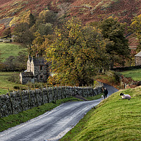 Buy canvas prints of Autumn in Martindale by Phil Buckle