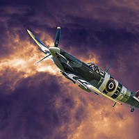 Buy canvas prints of Spitfire by Alf Damp