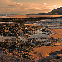 Buy canvas prints of Bamburgh Castle Northumberland by alan Barnes