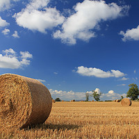 Buy canvas prints of Straw bales in a stubble field by alan Barnes