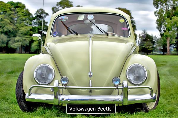 Volkswagen Beetle Canvas print by Paddy Geoghegan