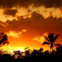 Buy canvas prints of A Tropical Sunset  by Christiane Schulze
