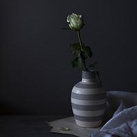Buy canvas prints of Single rose by Denitsa Karan