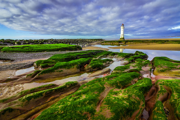 New Brighton Lighthouse Print by Andrew George