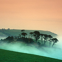 Buy canvas prints of Early Morniing Mist at Mansands by Paul Prestidge