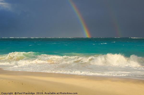 Caribbean Rainbow Acrylic by Paul Prestidge