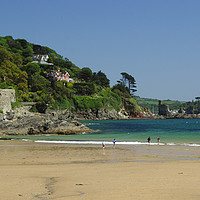 Buy canvas prints of South Sands Salcombe by Paul Prestidge
