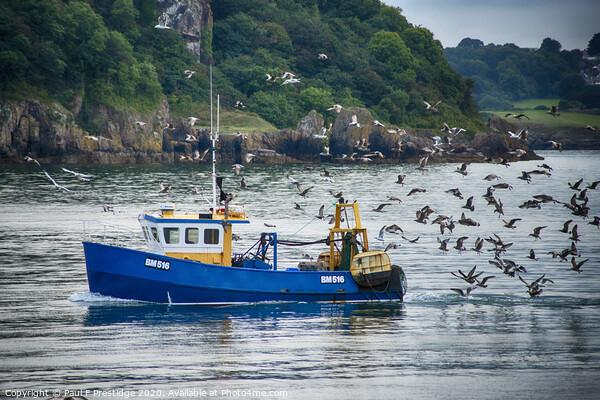 Blue Fishing Boat with Seagulls Framed Print by Paul F Prestidge