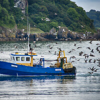 Buy canvas prints of Blue Fishing Boat with Seagulls by Paul F Prestidge