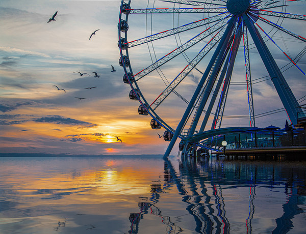 Great Wheel at Sunset with Birds Framed Mounted Print by Darryl Brooks