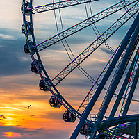 Buy canvas prints of Seagull by Wheel at Sunset by Darryl Brooks