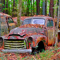 Buy canvas prints of Old Red Jimmy by Darryl Brooks