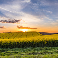 Buy canvas prints of South Downs Sunset by Nigel Smith