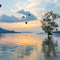 Buy canvas prints of Hot air balloons and mangrove tree by Kevin Hellon