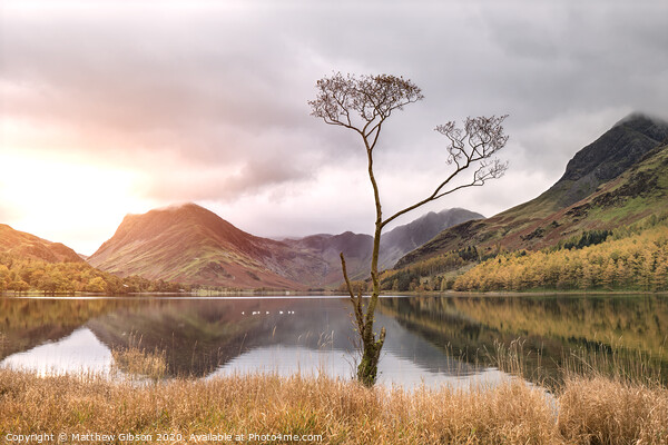 Beautiful Autumn Fall landscape image of Lake Buttermere in Lake District England  Print by Matthew Gibson