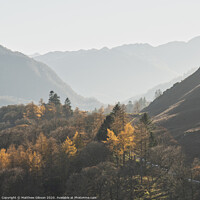 Buy canvas prints of Beautiful Autumn Fall landscape image of the view from Catbells in the Lake District with vibrant Fall colors being hit by the late afternoon sun by Matthew Gibson