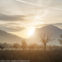 Buy canvas prints of Stunning Winter foggy sunrise over countryside around Crummock Water in Lake District England by Matthew Gibson