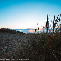 Buy canvas prints of Reeds on Wells Beach by Simon Wilkinson