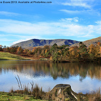 Buy canvas prints of Tarn Hows by Catherine Evans