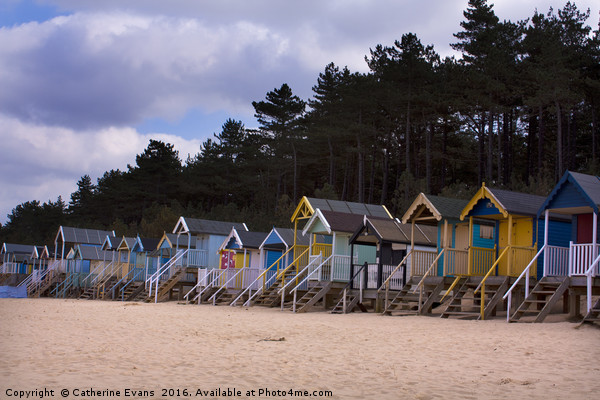 Wells Beach Huts Canvas print by Catherine Evans