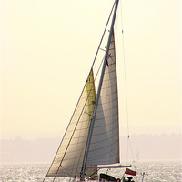 Buy canvas prints of Solent Yacht by Peter West
