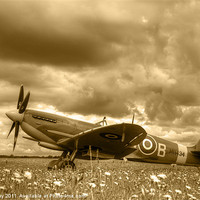Buy canvas prints of Spitfire Mk IXB by Chris Day
