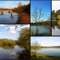 Buy canvas prints of Country Parks Collage by Chris Day
