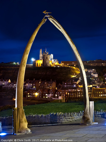 Whitby jawbone arch at twilight. Canvas print by Chris North