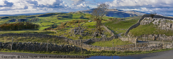 Windskill Stones and Penyghent Canvas print by Chris North
