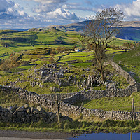 Buy canvas prints of Windskill Stones and Penyghent by Chris North