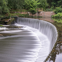 Buy canvas prints of Guyzance Weir on the River Coquet by mark james