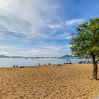 Buy canvas prints of The Beach at Puerto Pollensa by Jim Key