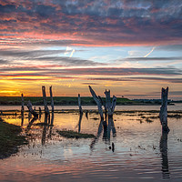Buy canvas prints of The Mysterious Stumps at Sunset by Jim Key