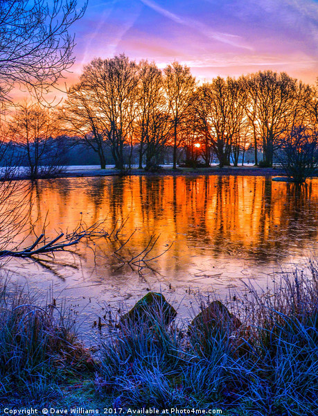 Sunrise at Yateley Green Pond, Yateley, Hampshire Canvas Print by Dave Williams