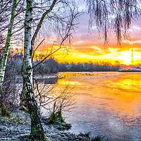 Buy canvas prints of Horseshoe Lake Sunrise, Sandhurst, Berkshire by Dave Williams