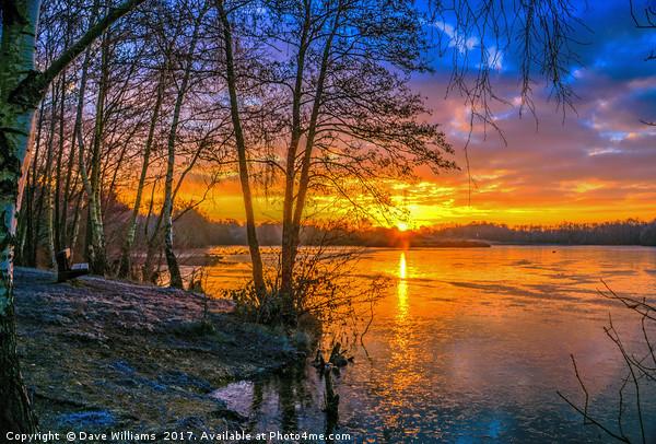 Horseshoe Lake Sunrise      Acrylic by Dave Williams
